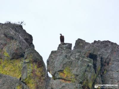Comarca La Siberia; parque moncayo san juan de la peña fotos la pinilla singles san sebastian